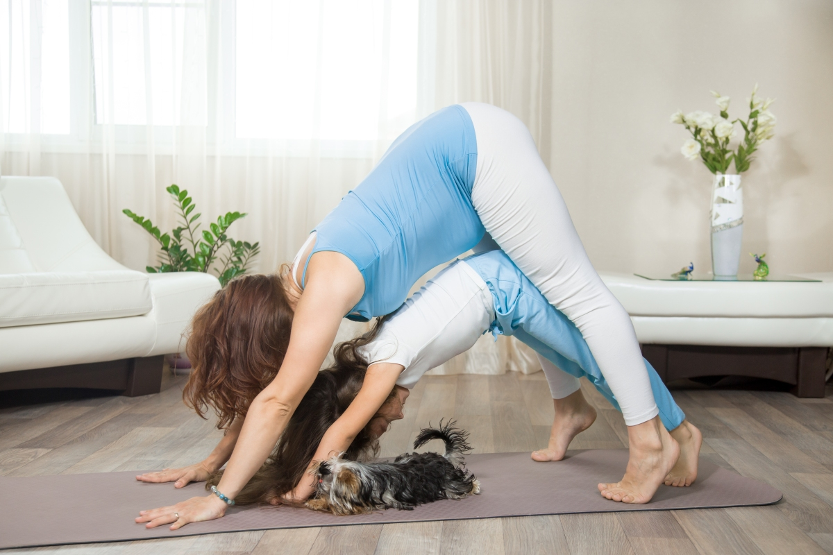 Pregnant mother and her kid girl doing fun yoga training at home